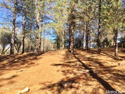Cool Residential Lots & Land For Sale: 2420 Secret Ravine Trail
