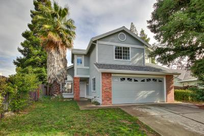 Elk Grove Single Family Home For Sale: 9613 Big Timber Drive
