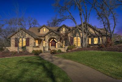 El Dorado Hills Single Family Home For Sale: 4256 Raphael Drive