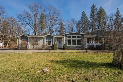 Weaverville Single Family Home For Sale: 161 Davis Drive
