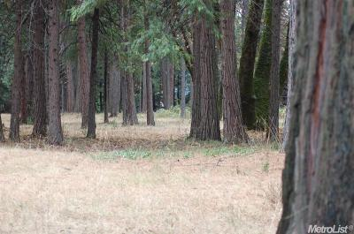 Placer County Residential Lots & Land For Sale: 2 Acres On Foresthill Road Road