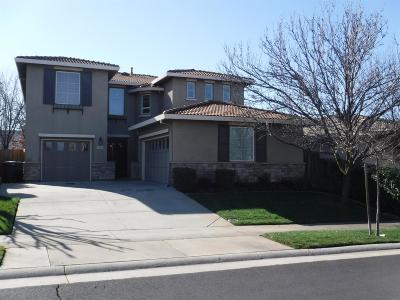 Roseville Single Family Home For Sale: 7601 Millport Drive