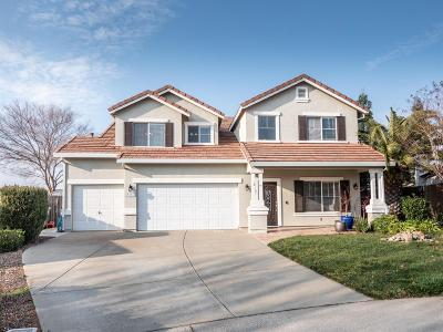 Rocklin Single Family Home For Sale: 5311 Brandon Drive