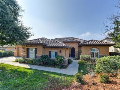 El Dorado Hills Single Family Home For Sale: 1206 Terracina Drive