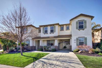 Elk Grove Single Family Home For Sale: 10074 Winkle Circle