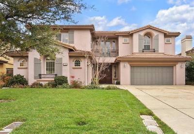 El Dorado Hills Single Family Home For Sale: 375 Chagall Court
