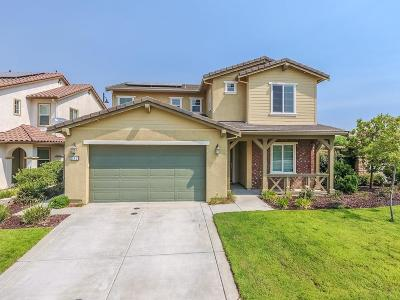 Rocklin Single Family Home For Sale: 832 Calico Drive