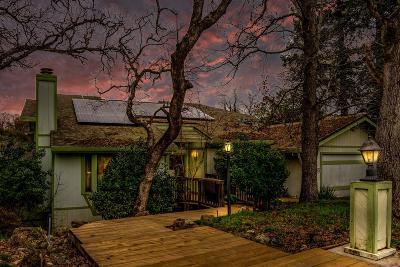 Fair Oaks Single Family Home For Sale: 8930 Van Gogh Circle