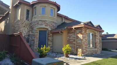 Elk Grove Single Family Home For Sale: 10020 Mosaic Way