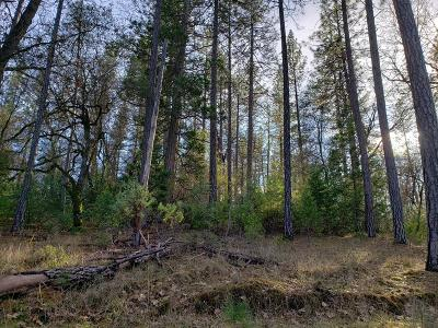 Auburn Residential Lots & Land For Sale: 2130 Dream Place
