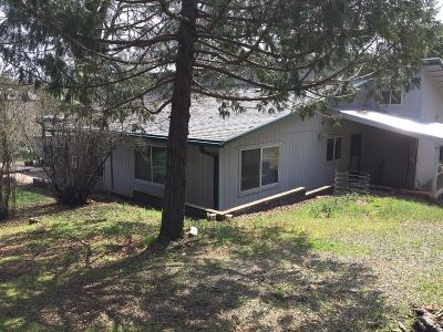 El Dorado County Single Family Home For Sale: 5161 Green Valley Road