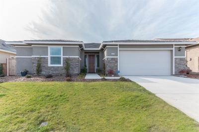 Single Family Home For Sale: 4229 Silver Lupine Ln
