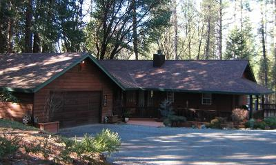 El Dorado County Single Family Home For Sale: 4521 Ingot Lane
