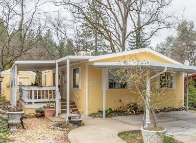 Diamond Springs Mobile/Manufactured For Sale: 1281 Pleasant Valley Road