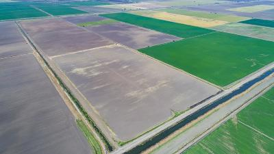 Stockton Commercial Lots & Land For Sale: 14501 West Bacon Island Road