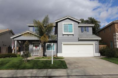 Elk Grove Single Family Home For Sale: 9479 Windrunner Lane