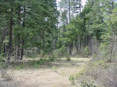 El Dorado County Residential Lots & Land For Sale: Pony Bob