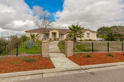 Gustine Single Family Home For Sale: 28906 West Vista Grande Drive