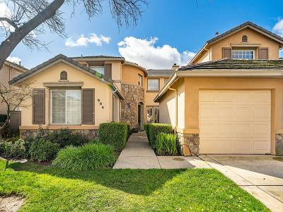 El Dorado Hills Single Family Home For Sale: 904 Apero Court