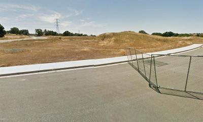 Valley Springs Residential Lots & Land For Sale: Vista Del Lago Drive