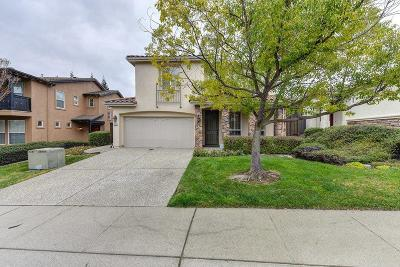 Folsom Single Family Home For Sale: 1313 Freswick Drive