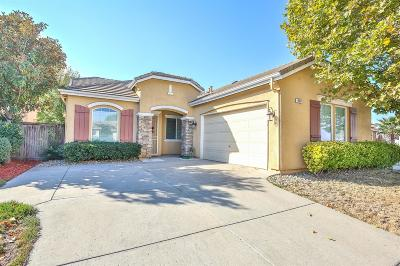Elk Grove Single Family Home For Sale: 9357 Oreo Ranch Circle