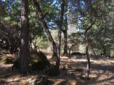 El Dorado County Residential Lots & Land For Sale: Shelter Cove