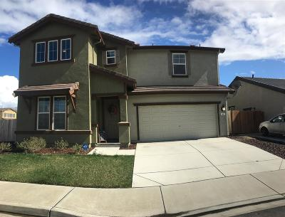 Newman Single Family Home For Sale: 902 Haycastle Court