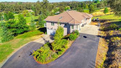 Placer County Single Family Home For Sale: 13399 Bell Brook Drive