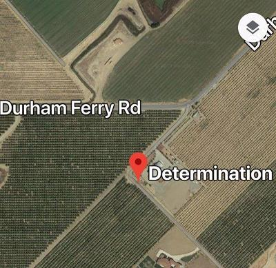 San Joaquin County Commercial Lots & Land For Sale: 31901 South Determination Drive