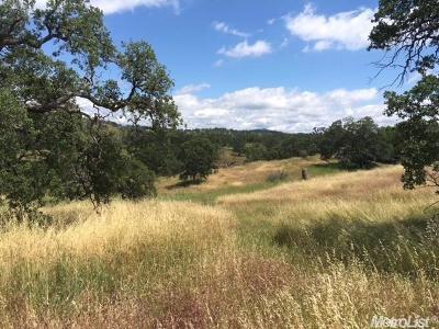La Grange Residential Lots & Land For Sale: 550 Pepito Drive
