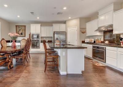 Placer County Single Family Home For Sale: 2280 Stansfield Drive