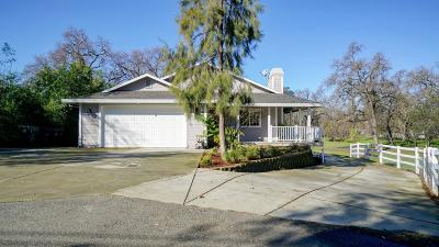 Citrus Heights Single Family Home For Sale: 7829 Silver