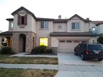 Lathrop Single Family Home For Sale: 17195 Andover Way