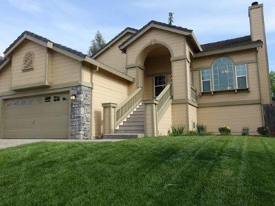 Folsom Single Family Home For Sale: 395 Seaton Drive