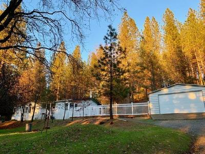 Oroville Single Family Home For Sale: 112 Renegade Road