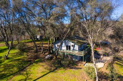 El Dorado County Single Family Home For Sale: 1501 Brevity Lane