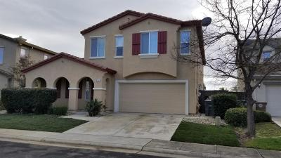 Elk Grove Single Family Home For Sale: 6724 Rio Tejo Way