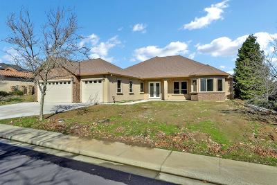 Copperopolis Single Family Home For Sale: 2079 Oak Creek Drive