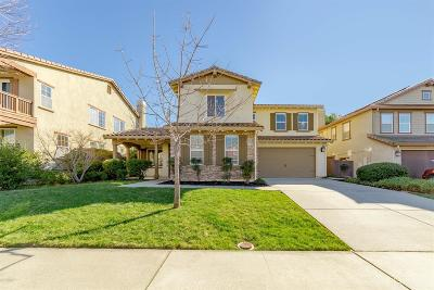 Rocklin Single Family Home For Sale: 2180 Red Setter Road