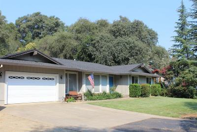 El Dorado County Single Family Home For Sale: 2942 Cambridge Road