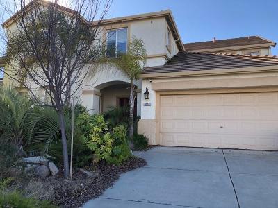 Manteca Single Family Home For Sale: 2137 Buena Vista Drive