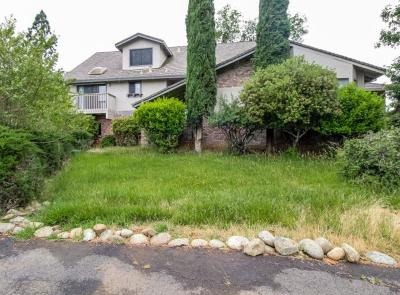 El Dorado County Single Family Home For Sale: 3190 Carlson Drive
