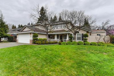 Elk Grove Single Family Home For Sale: 9479 Monte Cresta Way