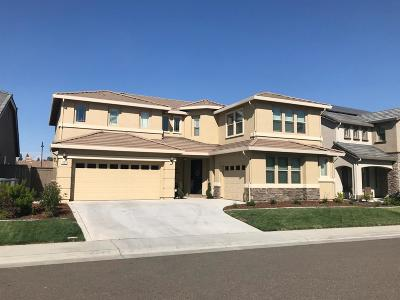 Rocklin Single Family Home For Sale: 1003 Georgetown Way