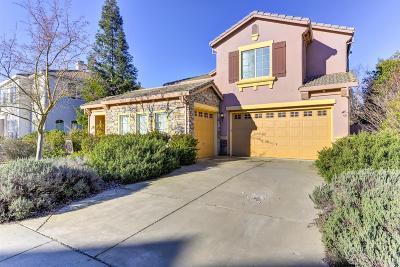 Sacramento Single Family Home For Sale: 7824 Tigerwoods Drive