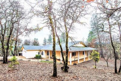 Weaverville Single Family Home For Sale: 210 Liberty