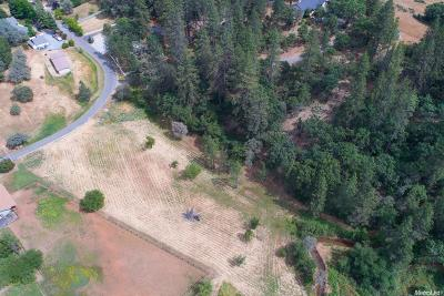 Auburn Lake Trails Residential Lots & Land For Sale: Secret Ravine Trail