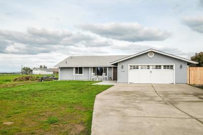 Elverta Single Family Home For Sale: 8648 El Verano