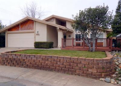 Orangevale Single Family Home For Sale: 5615 Bench Court